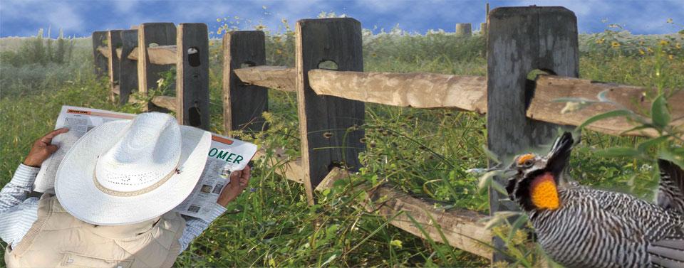 Friends of Attwater Prairie Chicken Refuge